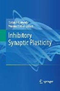 Inhibitory Synaptic Plasticity