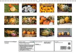 Kürbisse in knalligen Farben (Wandkalender 2017 DIN A3 quer)