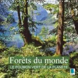 Forêts du monde - Le poumon vert de la planète (Calendrier mural