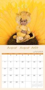 Sternzeichen 2017 Broschürenkalender