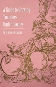 A Guide to Growing Tomatoes Under Cloches