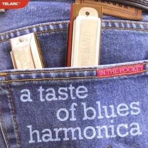 In The Pocket-A Taste Of Blu