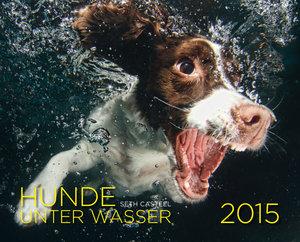 Hunde unter Wasser 2015