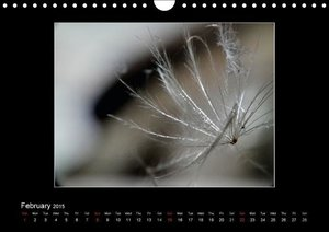 Beauty is in the detail (Wall Calendar 2015 DIN A4 Landscape)