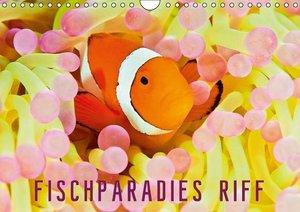 Fischparadies Riff (Wandkalender 2016 DIN A4 quer)