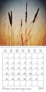 Wonderful Nature Art (Wall Calendar 2015 300 × 300 mm Square)