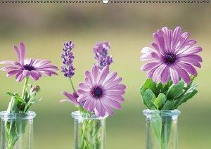 Petites Fleurs (PosterbuchDIN A3 quer)