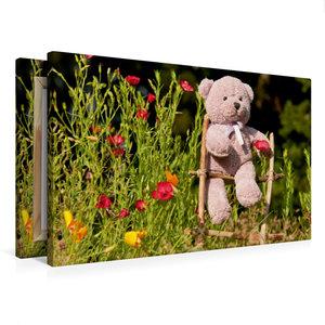 Premium Textil-Leinwand 75 cm x 50 cm quer Kletterbär im Garten