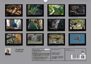 Vögel des Pantanal