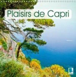 Plaisirs de Capri (Calendrier mural 2015 300 × 300 mm Square)