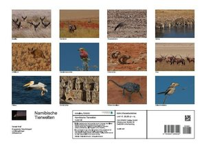Namibische Tierwelten (Posterbuch DIN A3 quer)