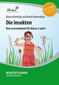 Die Insekten. Grundschule, Sachunterricht, Klasse 3-4