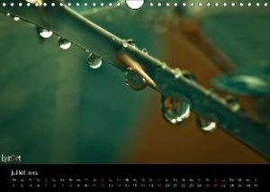 Après la pluie (Calendrier mural 2015 DIN A4 horizontal)