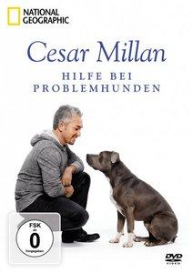 Cesar Millan:Hilfe für Problemhunde