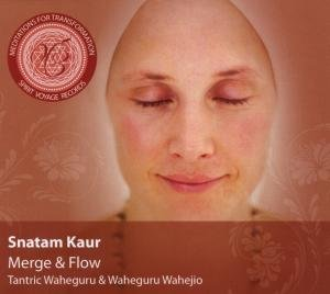 Meditations for Transformation-Merge & Flow