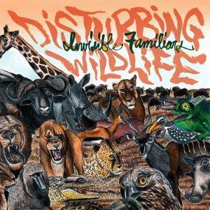 Disturbing Wildlife