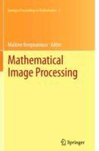 Mathematical Image Processing