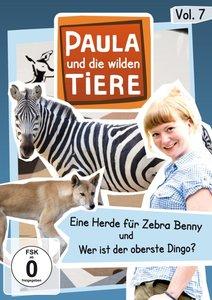 Paula und die wilden Tiere 07: Eine Herde für Zebra Benny / Wer