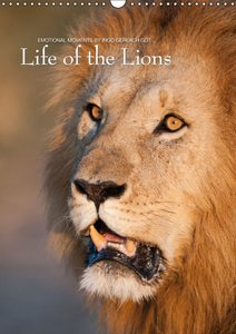 Gerlach, I: Emotional Moments: Life of the Lions UK Version