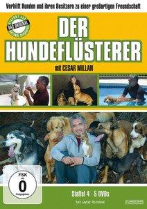 Der Hundeflüsterer Staffel 4