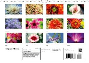 Language of Flowers (Wall Calendar 2015 DIN A4 Landscape)