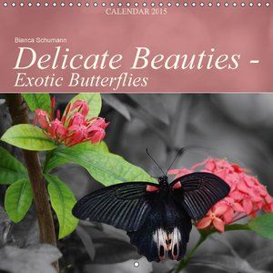 Delicate Beauties - Exotic Butterflies (Wall Calendar 2015 300 ×