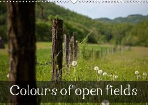Colours of open fields (Wall Calendar 2015 DIN A3 Landscape)