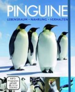 Pinguine - Boxset mit DVD