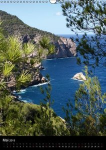Ibiza (Wandkalender 2015 DIN A3 hoch)