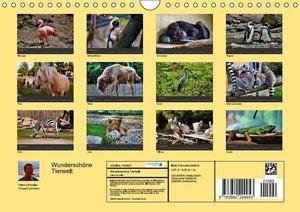 WunderschöneTierwelt (Wandkalender 2014 DIN A4 quer)
