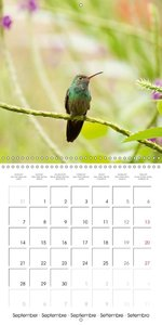 beautiful Costa Rica (Wall Calendar 2015 300 × 300 mm Square)