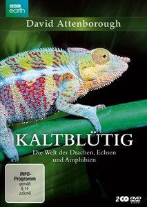 Kaltblütig - Die Welt der Drachen, Echsen und Amphibien