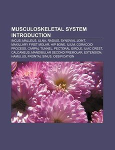 Musculoskeletal system Introduction