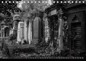 Morbide Zeitzeugen - Orte der Vergänglichkeit