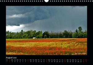 Poppies of my heart (Wall Calendar 2020 DIN A3 Landscape)