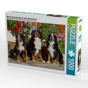 Berner Sennenhunde vor einem Bauernhaus 1000 Teile Puzzle quer
