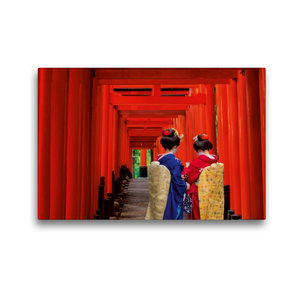 Premium Textil-Leinwand 45 cm x 30 cm quer Die Tori des Fushimi