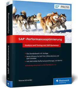 SAP-Performanceoptimierung