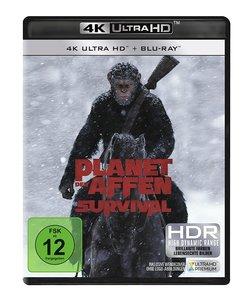 Planet der Affen - Survival - 4K Ultra HD