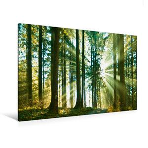 Premium Textil-Leinwand 120 cm x 80 cm quer Durchblick