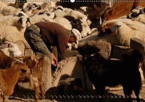 Wüste Gobi (Wandkalender 2019 DIN A2 quer)