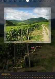 Camino Frankreich (Wandkalender 2019 DIN A3 hoch)