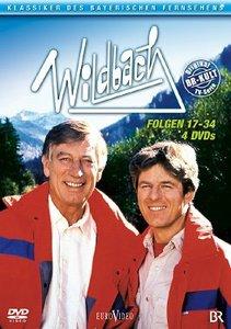 Wildbach