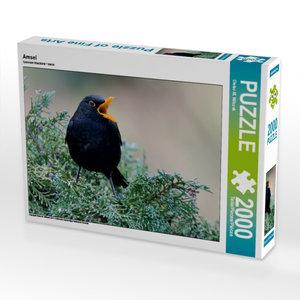 Amsel 2000 Teile Puzzle quer