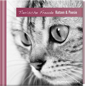 Geschenkbuch - Katzen & Poesie - (11 x 11,5)