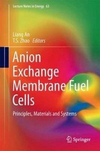 Anion Exchange Membrane Fuel Cells
