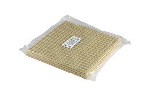 4x Bauplatte elfenbein 20x20 Noppen, 16x16xcm - Basis für Spielz