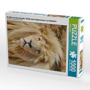 CALVENDO Puzzle Ein Bild von dem Kalender: Weiße Löwen Impressio