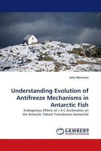 Understanding Evolution of Antifreeze Mechanisms in Antarctic Fi