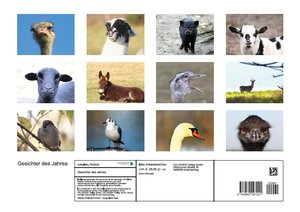 Gesichter des Jahres (Posterbuch DIN A3 quer)